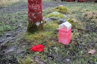 Eva Björkman, Tråden/The Thread, 2015