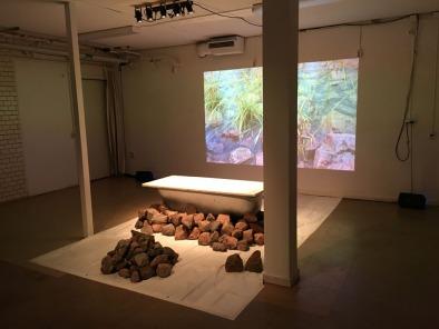 Eva Björkman - The Bath Tub, installation and performance.